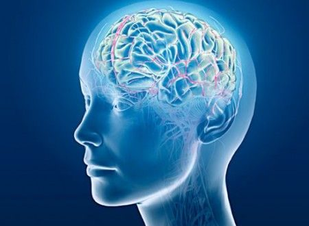 Il cervello impiega un tempo brevissimo per smascherare un bugiardo